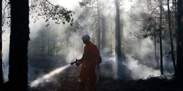 Eftersläckning av branden i skogarna kring Grössjön. Erik Abel/TT / TT NYHETSBYRÅN