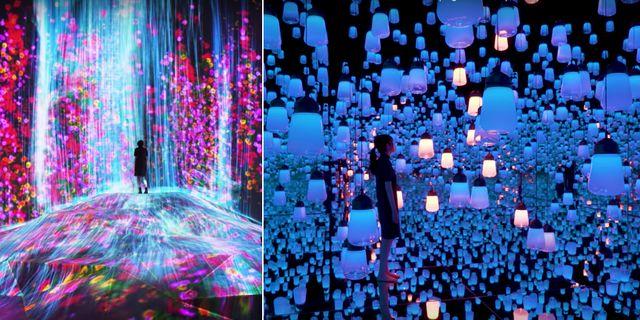 I veckan var det premiär för Mori Building Digital Art Museum i Tokyo. Youtube