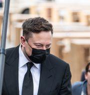 Elon Musk.  Fabian Sommer / TT NYHETSBYRÅN