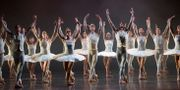 Dansare på Kungliga Operan. Arkivbild. FREDRIK SANDBERG / TT / TT NYHETSBYRÅN