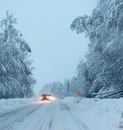 Vinterlandskap i Sundsvall. Mats Andersson/TT / TT NYHETSBYRÅN