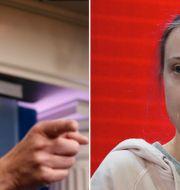 Steven Mnuchin och Greta Thunberg Jacquelyn Martin/AP och Markus Schreiber/AP