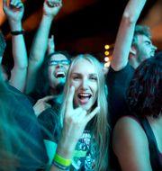 Metallicas konsert på Ullevi 2015. Björn Larsson Rosvall/TT / TT NYHETSBYRÅN
