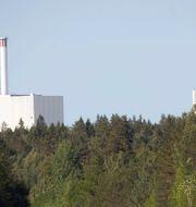 Kärnkraftverket i Forsmark. Arkivbild. FREDRIK SANDBERG / TT / TT NYHETSBYRÅN