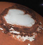Illustrationsbild som visar en av Mars frusna poler. Pike-28/Shutterstock