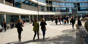 Arkivbild på Södertörns högskola i Flemingsberg. Claudio Bresciani / TT / TT NYHETSBYRÅN