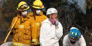 Kvarlevor efter branden samlas in i Paradise, Kalifornien. TERRAY SYLVESTER / TT NYHETSBYRÅN