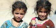 Två flickor i utkanten av Afghanistan. Rahmat Gul / TT NYHETSBYRÅN