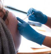 Vaccinering mot covid-19 i Sollentuna. Fredrik Sandberg/TT / TT NYHETSBYRÅN