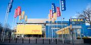 Ikeas varuhus i Kungens kurva i Huddinge utanför Stockholm. Jessica Gow/TT / TT NYHETSBYRÅN