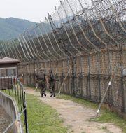 Arkivbild: Sydkoreanska soldater patrullerar vid den demilitariserade zonen i närheten av staden Goseong Ahn Young-joon / TT NYHETSBYRÅN