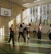 Elever i en gymnastiksal. ERIK G SVENSSON / TT NYHETSBYRÅN