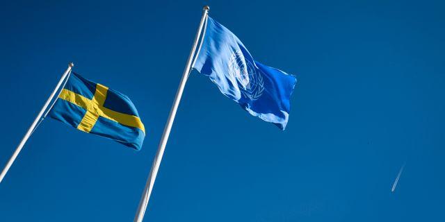 Arkivbild. Svenska flaggan och FN-flaggan.  Johan Nilsson/TT / TT NYHETSBYRÅN