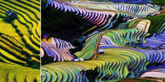 Nästan alla som kommer till Sapa tar på sig vandringskängorna och traskar ut på lederna, över hängbroar, längs floder och upp på Hoang Lien Son-bergen, där färgstarka risfält faller ned i skulpterade terrasser. Get up and go Vietnam