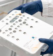 Jakten på mutationer trappas upp. Sofia Gruvberger Saal, sektionschef vid Centrum för molekylär diagnostik (CMD), förevisar det sekvenserings instrument som används för att söka efter mutationer av coronaviruset SARS-CoV-2 i positiva Covid-19 prover som skickats till Region Skånes labb i Lund. Johan Nilsson/TT / TT NYHETSBYRÅN