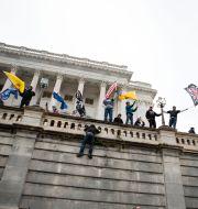 Bild från Kapitolium, 6 januari.  Jose Luis Magana / TT NYHETSBYRÅN