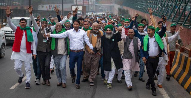 Bild från protesterna igår. Altaf Qadri / TT NYHETSBYRÅN