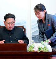 Kim Jong-Un och Kim Yo-Jong. TT NYHETSBYRÅN