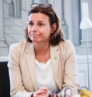 Isabella Lövin, avgående språkrör för Miljöpartiet. TT