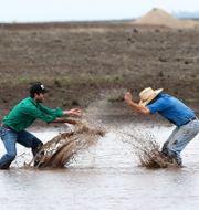 Bönder i New South Wales. STRINGER / TT NYHETSBYRÅN