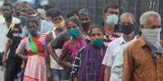 Människor köar för mat i Mumbai. Rafiq Maqbool / TT NYHETSBYRÅN