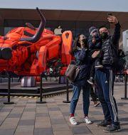 """Bull market? Firandet av """"Oxens år"""" i Peking, 2021. Andy Wong / TT NYHETSBYRÅN"""