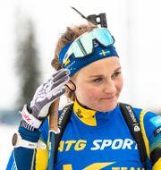 Stina Nilsson/Arkivbild.  Per Danielsson / TT NYHETSBYRÅN