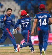Afghanistans Rashid Khan under matchen.  Aijaz Rahi / TT NYHETSBYRÅN