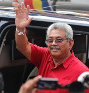 President Gotabaya Rajapaksa Eranga Jayawardena / TT NYHETSBYRÅN
