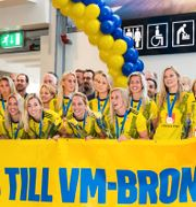 Det svenska laget. MICHAEL ERICHSEN / BILDBYRÅN