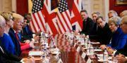 Donald Trump och Theresa May vid ett rundabordssamtal med näringslivet i London. POOL / TT NYHETSBYRÅN