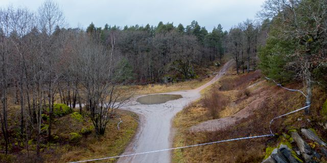 Polisen har spärrat av ett skogsområde. Adam Ihse/TT / TT NYHETSBYRÅN