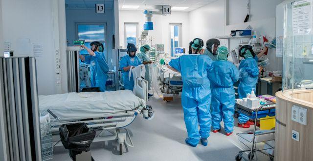 IVA-avdelning på Södertälje sjukhus. Staffan Löwstedt/SvD/TT / TT NYHETSBYRÅN
