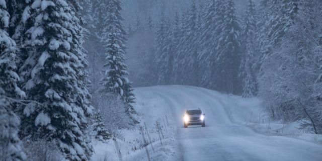 Vinterväg mellan Lillehammer och Mesnali.  Geir Olsen / TT NYHETSBYRÅN