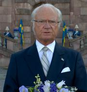 Bild från kungens tal.  Skärmdump