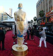 En Oscarsstaty på röda mattan, 2013. Matt Sayles / TT NYHETSBYRÅN