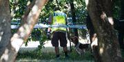Polis med vapenhund i Nydala i Malmö. Johan Nilsson/TT / TT NYHETSBYRÅN