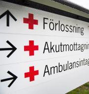 Skylt till förlossningsavdelning.  Emil Langvad/TT / TT NYHETSBYRÅN