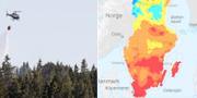 SMHI:s prognos för risk för skogsbrand under lördagseftermiddagen. TT/SMHI