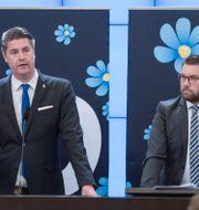 Oscar Sjöstedt och Jimmie Åkesson.  Amir Nabizadeh/TT / TT NYHETSBYRÅN