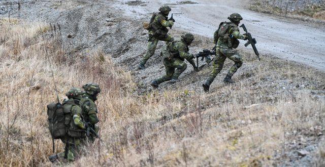 Militärövning. Pontus Lundahl/TT / TT NYHETSBYRÅN
