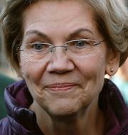 Joe Biden / Elizabeth Warren / Kamala Harris TT