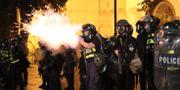 Bild från protesterna.  IRAKLI GEDENIDZE / TT NYHETSBYRÅN
