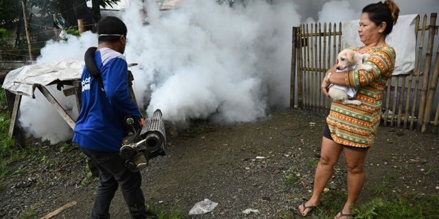 En skadedjursbekämpare i Filippinerna tar kål på myggor som kan sprida denguefeber. TED ALJIBE / AFP