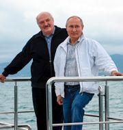 Aleksandr Lukasjenko och Vladimir Putin poserar för ett foto i Sotji. Bilden är från igår. Sergei Ilyin / TT NYHETSBYRÅN