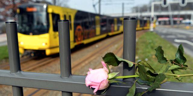 Arkbild. Blomma vid platsen där dådet utfördes.  Piroschka Van De Wouw / TT NYHETSBYRÅN