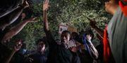 Bild från protesterna i Austin i Texas. Lola Gomez / TT NYHETSBYRÅN