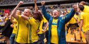 Svenska fans under matchen mot Sydkorea. KENTA J NSSON / BILDBYR N
