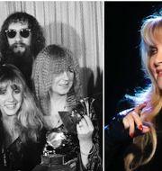 Fleetwood Mac och Stevie Nicks. TT