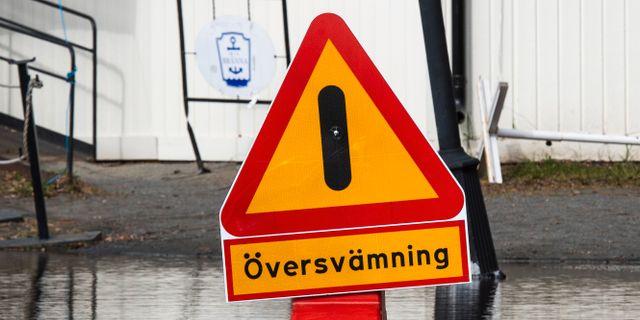 Arkivbild. Simon Eliasson/TT / TT NYHETSBYRÅN